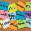Idegen nyelv mint anyanyelv