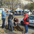 A Nevelők Háza Egyesület is csatlakozott a 6-os út menti faültetési programhoz