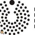 Összeállt a Pécs-Baranyai Értelmiségi Egyesület őszi programja